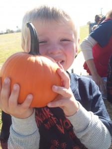 I got my pumpkin!