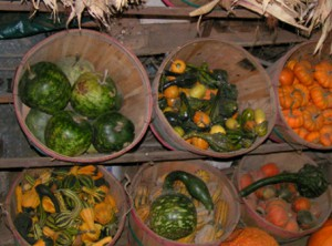 Baskets of Gourds
